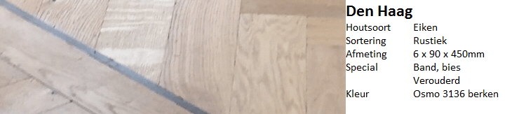 visgraat vloer den haag